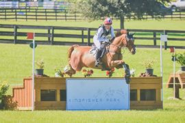 2020 USEA Hanoverian Eventing Awards Winners