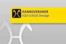 Worldwide Hannoveraner Competition