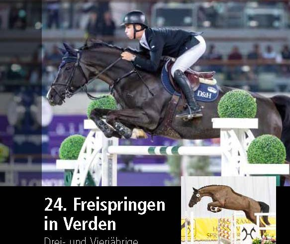 Hannoveraner Free jumping competition live on the Internet Wednesday, March 31